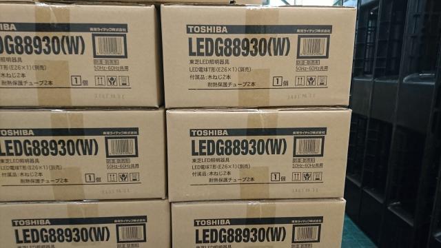 ledg88930w-1.JPG